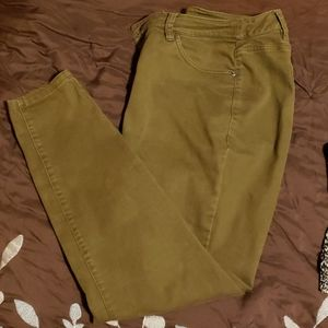 Lane Bryant Jeggings